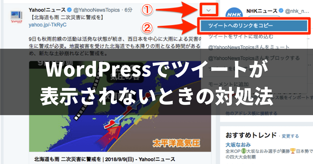 WordPressでツイートが表示されないときの対処法